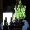 義大利國慶晚宴